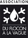 Logo du flocon à la vague